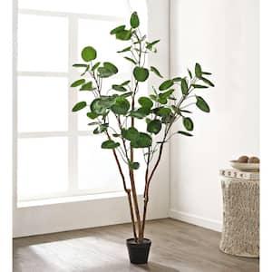 Artificial Polyscias Tree 59.0 in. Black Plastic Pot