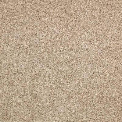 Gemini II- Color Artisan Hue Texture Beige Carpet