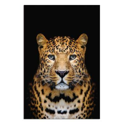 "Oppidan Home ""Spotted Leopard"" Acrylic Wall Art 48 in. H x 32 in. W"