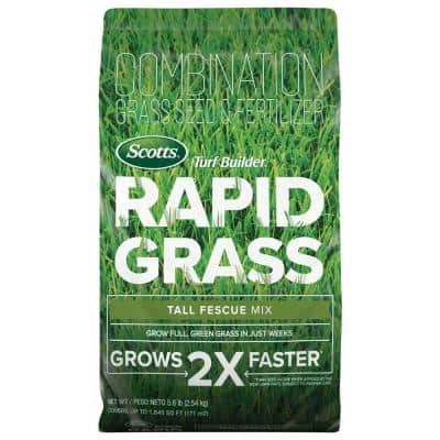 Turf Builder Rapid Grass 5.6 lb. Tall Fescue Grass Seed