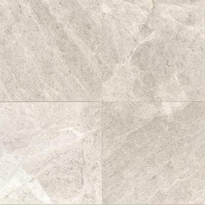 Arctic Gray 12 in. x 12 in. Natural Polished Stone Floor and Wall Tile (10 sq. ft. / case)