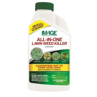 Herbicides All-In-One Lawn Weed Killer Concentrate