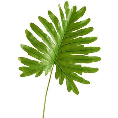 Indoor Jumbo Cellium Philo Leaf (Set of 3)