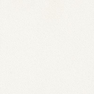 4 in. x 4 in. Quartz Countertop Sample in Arctic White