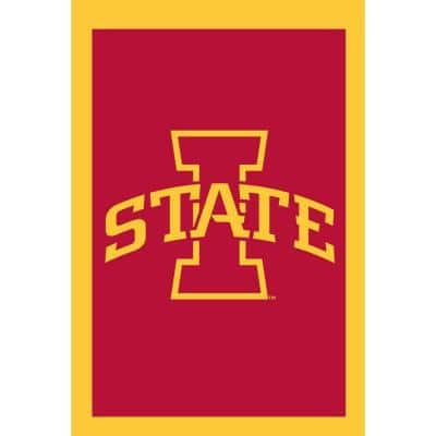 NCAA 28 in. x 44 in. Iowa State 2-Sided Flag