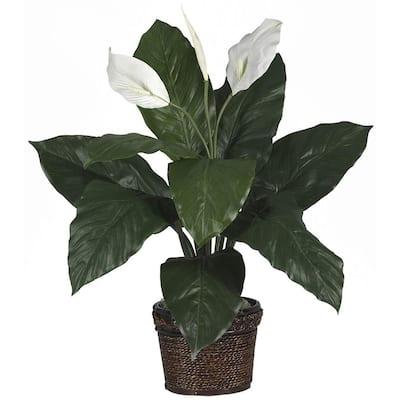 26 in. Spathyfillum Silk Plant with Wicker Basket
