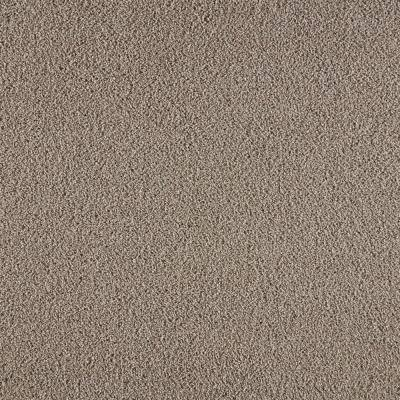 Collinger II - Color Cloudswept 12 ft. Texture Carpet