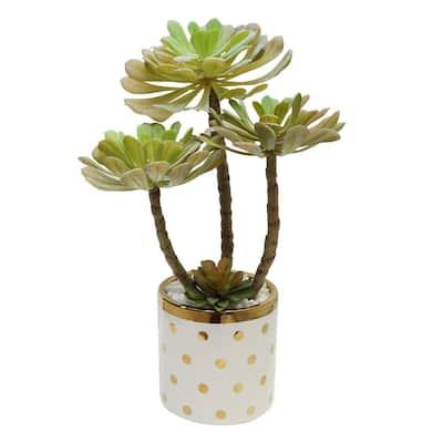 Potted Succulent Stem in Polka Dot Vase Green/Gold