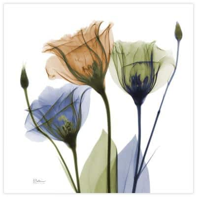 """""""Gentian Buddies"""" Unframed Free Floating Tempered Glass Panel Graphic Wall Art Print 24 in. x 24 in."""