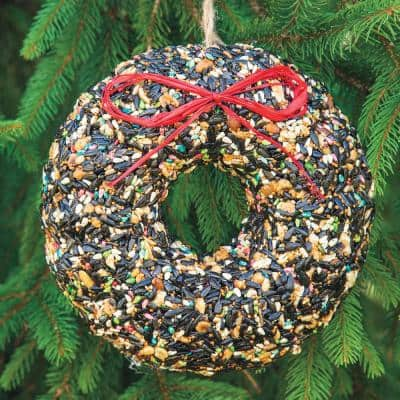 8.50 in. Wreath Shaped Birdseed with Raffia Bow and Burlap Hanger (1-Pack)