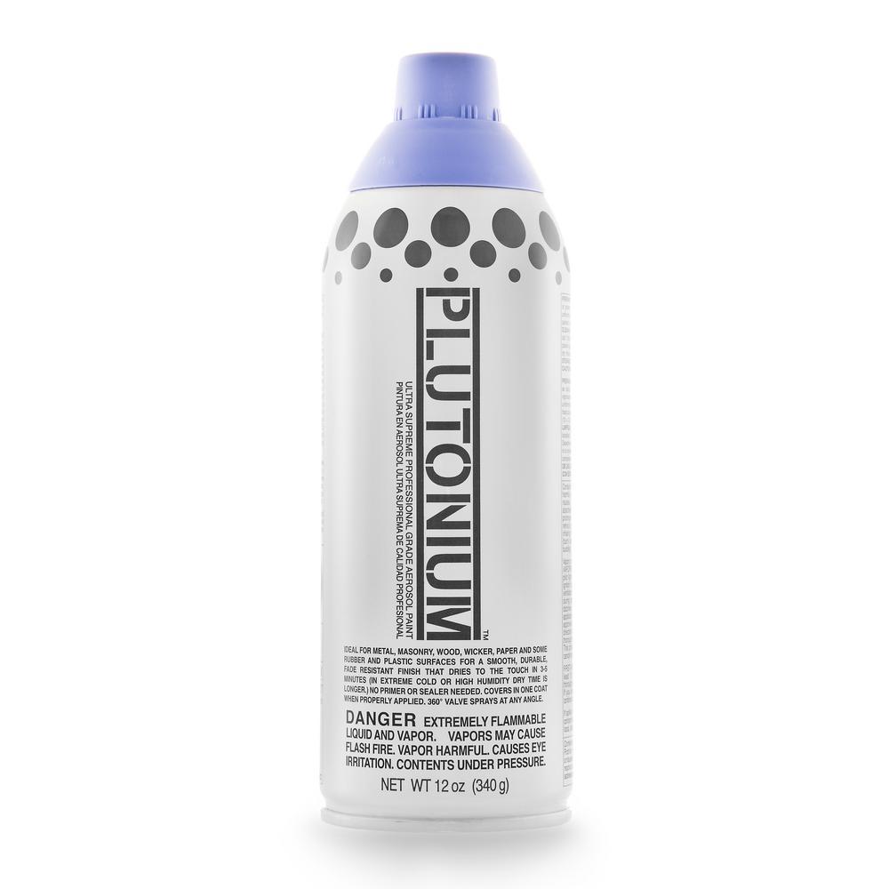 12 oz. Prince Spray Paint