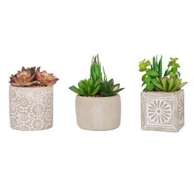 Artificial Succulent Plants in Cement Pots (Set of 3 )
