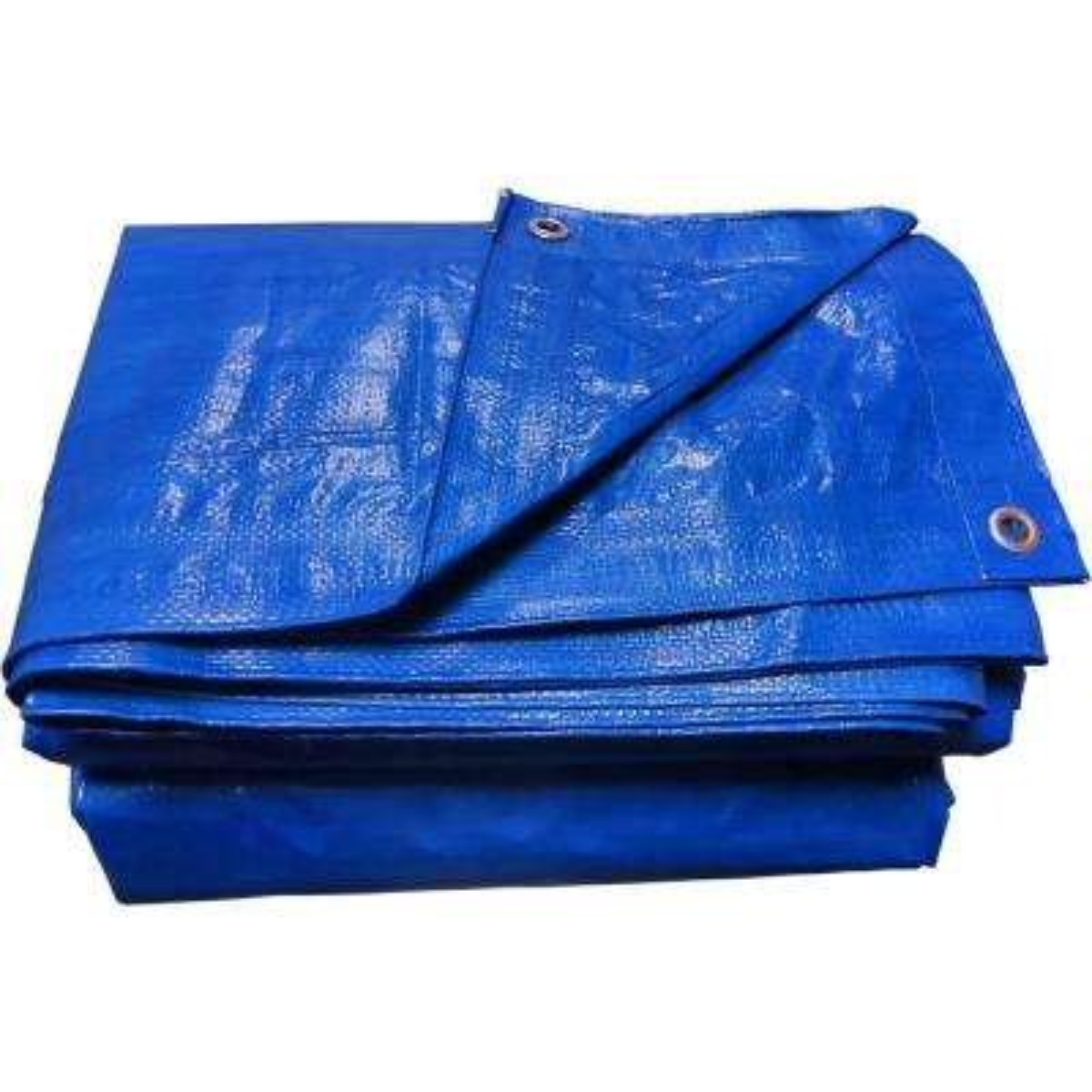 12 ft. x 16 ft. Blue General Purpose Tarp (2-Pack)