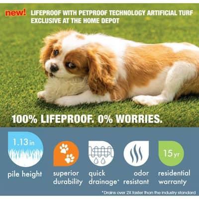 Premium Pet Turf 12 ft. Wide x Cut to Length Green Artificial Grass