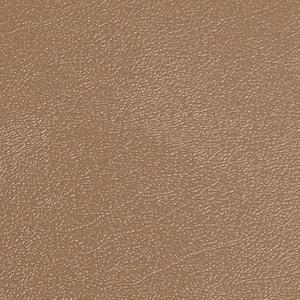 Levant 10 ft. x 24 ft. Sandstone Vinyl Universal Flooring