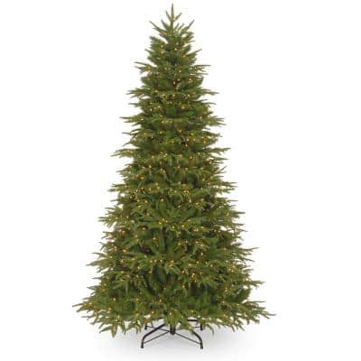 9 ft. Northern Frasier Fir Tree with Clear Lights
