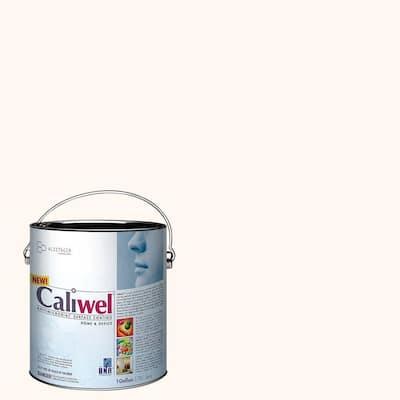 1 gal. Off White Latex Interior Paint