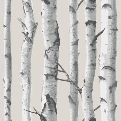 Birch Tree Multi-Color Wallpaper Sample