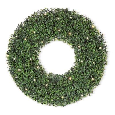 24 in. D Boxwood Wreath