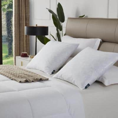 100% Cotton Euro Square Firm Feather Pillow (2-Pack)