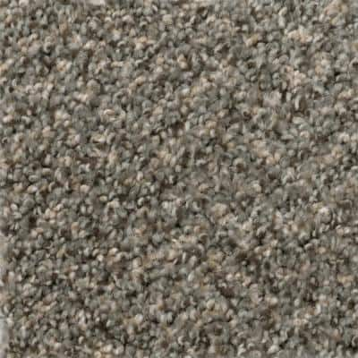 Gallop - Color Maverick Texture 12 ft. Carpet