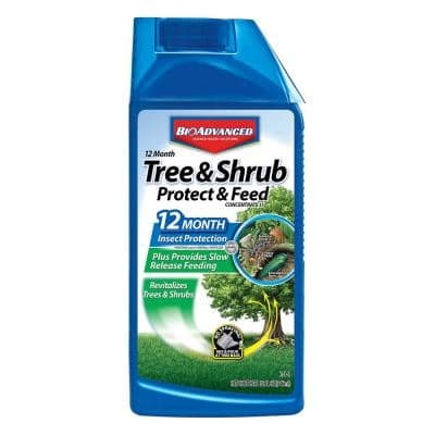 32 oz. Concentrate Tree and Shrub Protect with Feed