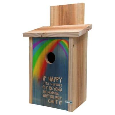 Decorative Rainbow Design Cedar Blue Bird House