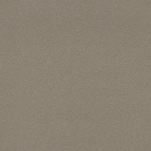 5 ft. x 8 ft. Laminate Sheet in Nickel EV with Matte Finish