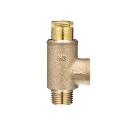 1/2 in. MNPT x 1/2 in. FNPT Calibrated Pressure Relief Valve