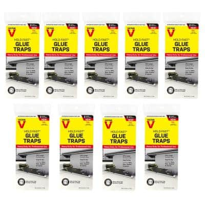 Hold-Fast Rat Glue Traps (18-Count)