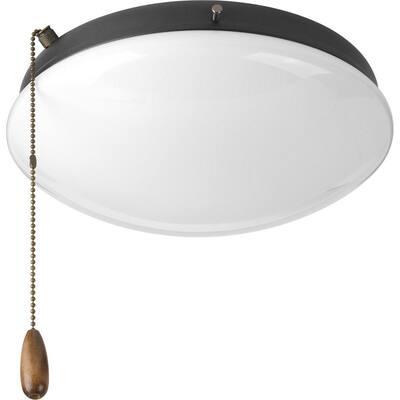 Fan Light Kits Collection 2-Light Graphite Ceiling Fan Light Kit
