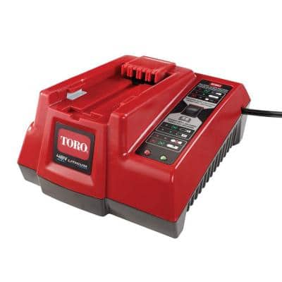 48-Volt Replacement Battery Charger