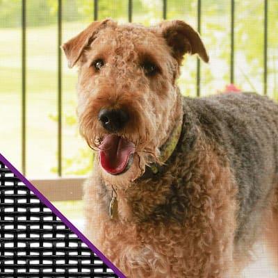 48 in. x 84 in. Charcoal Pet Resistant Window Screen
