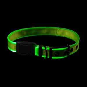NiteDog - L - Lime/Green Rechargeable LED Collar