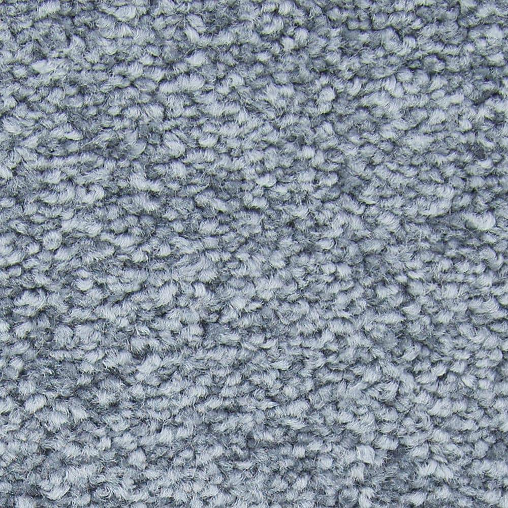 Lifeproof with Petproof Technology Gentle Peace I - Color Olympia Texture 12 ft. Carpet