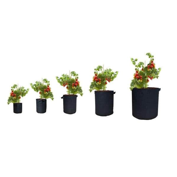 5-Pack 5 Gallon Fabric Plant Pots for Indoor or Outdoor Gardening 1//2cuft Planting Container to Grow Herbs Vegetables Fruit Flowers TERRADISE Grow Bags Set of 5 5 Garden Pot Planter