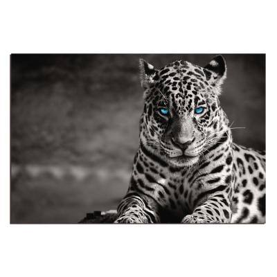 """Oppidan Home """"Spotted Leopard in Black and White"""" Acrylic Wall Art 32 in. H x 48 in. W"""
