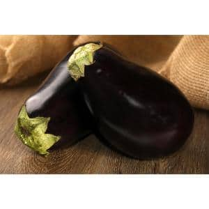 4.25 in. Grande Proven Selections Classic Eggplant Live Vegetable Plant, 4-Pack