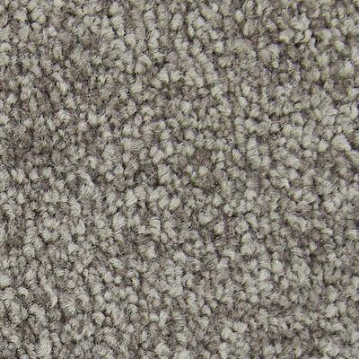 Gentle Peace II - Color Contessa Texture 12 ft. Carpet