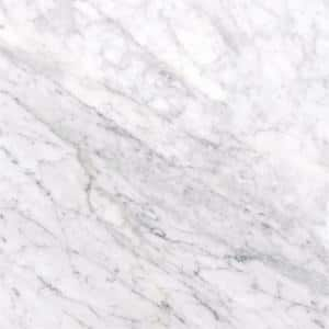 Carrara White 12 in. x 12 in. Honed Marble Floor and Wall Tile (10 sq. ft./Case)
