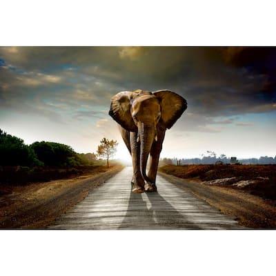 Whimsical Walking Elephant Abstract Wall Mural