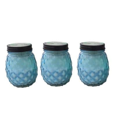 9 oz. Glass Pineapple Citronella and Lemongrass Candle (3-Pack)