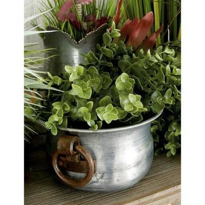 13 in. Grey Metal Farmhouse Planter (3-Pack)