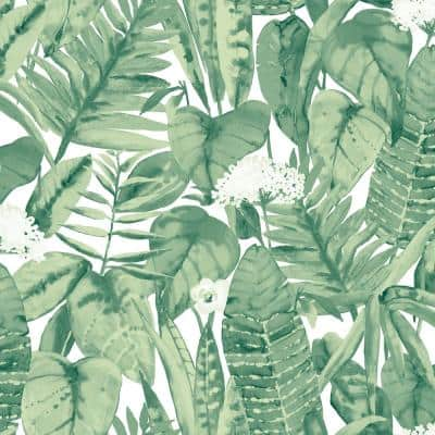 Tropical Jungle Green Peel and Stick Wallpaper (Covers 56 sq. ft.)