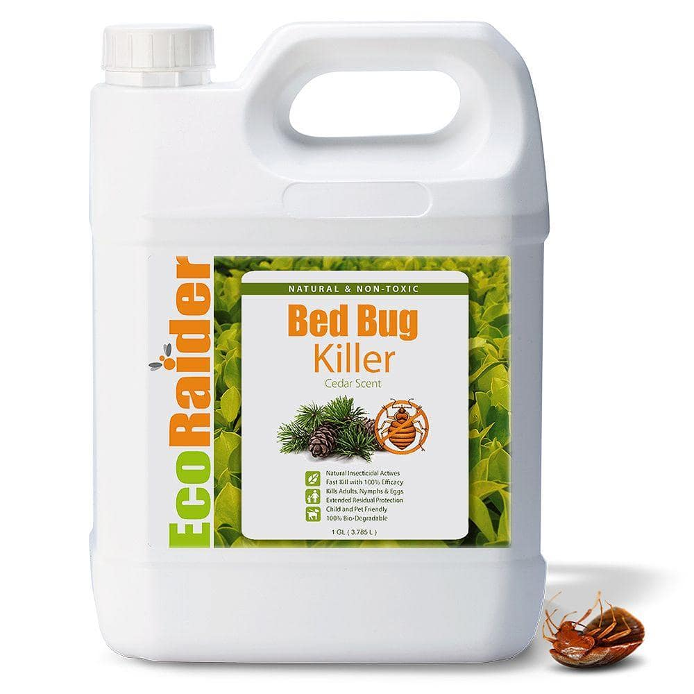Ecoraider 1 Gal Natural Bed Bug Killer Eb1rm5001ghd The Home Depot