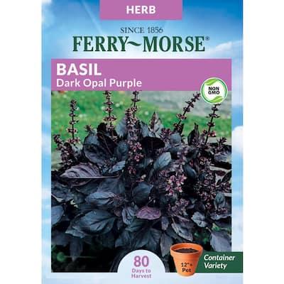 Herb Basil Purple Dark Opal Seed