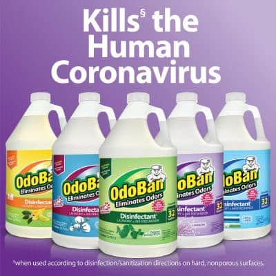 1 Gal. Eucalyptus Disinfectant and Odor Eliminator, Fabric Freshener, Mold Control, Multi-Purpose Cleaner Concentrate