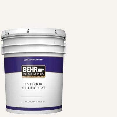 5 gal. Ultra Pure White Ceiling Flat Interior Paint
