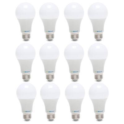 100-Watt Equivalent Daylight (6500K) A19 E26 Base LED Light Bulbs (12-Pack)