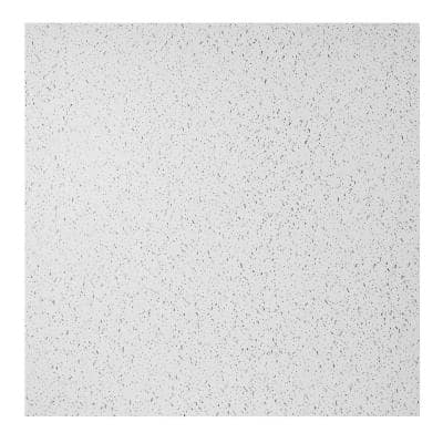 23.75in. x 23.75in. Printed Pro Lay In Vinyl White Ceiling Tile (Case of 12)
